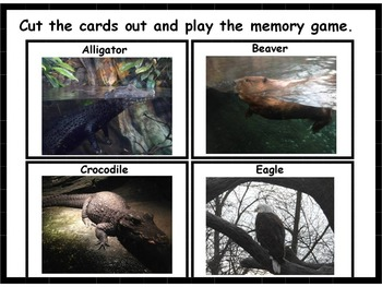 Swamp Animal Memory Game