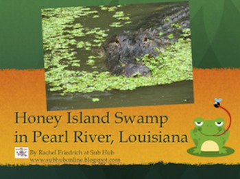 Swamp Powerpoint Presentation