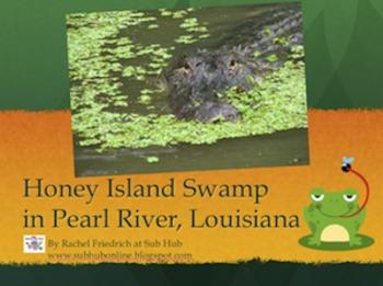 Swamp Powerpoint Presentation
