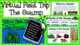 Swamp - Virtual Field Trip!