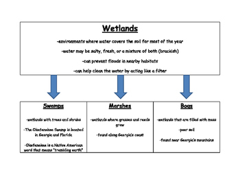 Swamps, Marshes, and Bogs Graphic Organizer