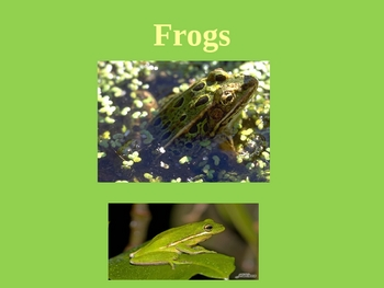 Swamps and Marshes of Georgia Plants & Animals PowerPoint