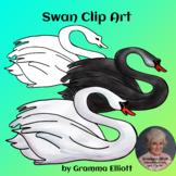 Swan Clip Art