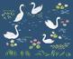 Swan Lake Illustration, gouache clipart, animals