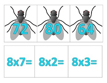 Swat the Fly Multiplication