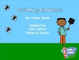 Swatting Numbers