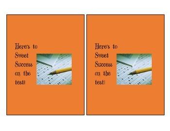 Sweet Success - Orange