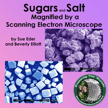 Sweets Magnified by a Scanning Electron Microscope SEM - a Mini Book