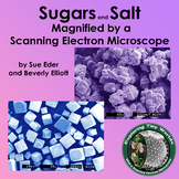 Sugars and Salt Magnified by a Scanning Electron Microscop