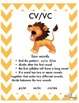 Orton Gillingham-Syllable Division Posters: VC/CV  V/CV  VC/V CV/VC VCCCV