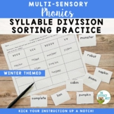 Syllable Types and Syllable Division Sorting Practice FREEBIE