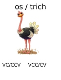 Syllable Rules- Ostrich Words and Rabbit Words- Visual Aide