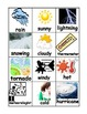 Syllable Sort and Mini Word Wall for 15 Themes!