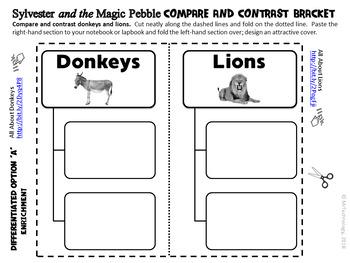 Sylvester and the Magic Pebble Book Companion & Interactive Notebook Activities