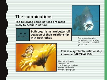 Symbiosis Case Study Powerpoint