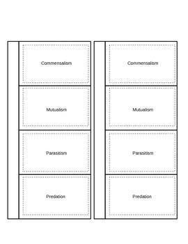 Symbiosis Vocabulary Foldable