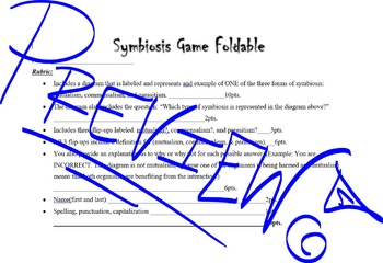 Symbiosis Foldable Game Rubric