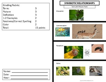 Symbiosis Foldable:  Study of Ecosystems