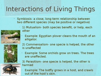 Symbiosis PowerPoint