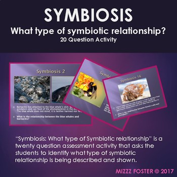 Symbiosis : What type of symbiotic relationship? 20 question activity