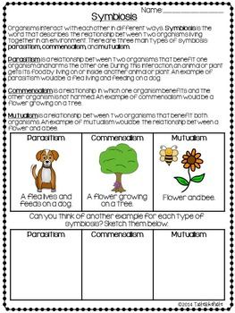 Symbiosis Sort and Comprehension Page
