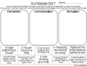 Symbiosis Sort And Comprehension Page By Tasteslikepaste Tpt