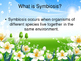 Symbiosis eBook