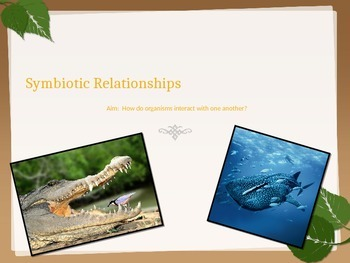 Symbiotic Relationships Bundle