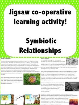WORKSHEET Symbiosis -Allelopathy, parasitism, mutualism, c