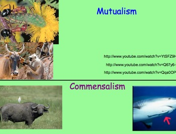 Symbiotic Relationships - Lesson Plan, Presentation, Videos, Assignment