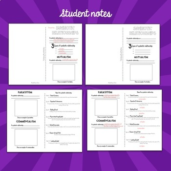 Symbiotic Relationships PowerPoint and Notes