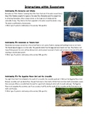 Symbiotic Relationships Reading Assignment-Editable