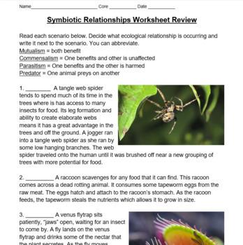 Symbiotic Relationships Worksheet -- Review Ecological Relationships