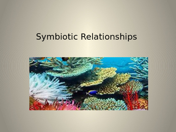 Symbiotic Relationships in Animals and Plants