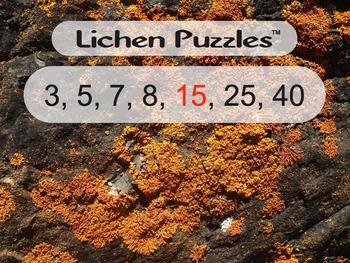 Lichen Puzzles (multiplication & subtraction with $100 challenge)
