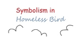 Symbolism in Homeless Bird