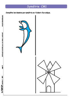Symetrie 1 CM1