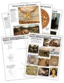 Symmetry / Balance in Famous Art History Worksheets Presentation +