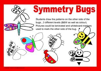 Symmetry Bugs