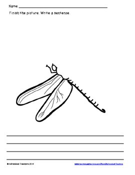 Symmetry  Draw and Write Insects