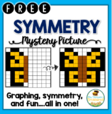 Symmetry Fun FREEBIE {Mystery Picture Graphing Activity}