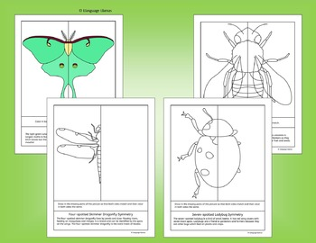 Symmetry - North American Insects - Fun Bug Activities