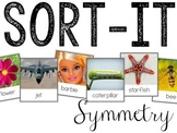 Symmetry: Sorting Activity