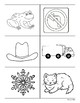 Symmetry Sorting Center and Follow-Up Sorting Worksheet -