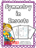 Symmetry in Insects_ Drawing worksheets to practise symmetry