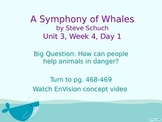 Symphony of Whales PowerPoint Reading Street 3.3.4