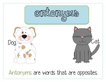 Synonym & Antonym Anchor Chart