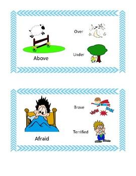 Synonym & Antonym Flip Cards