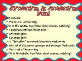 Synonym Antonym Game and Lesson Kit
