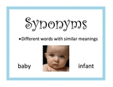 Synonym, Antonym, Homophone, Homonym, Homograph Poster Pack